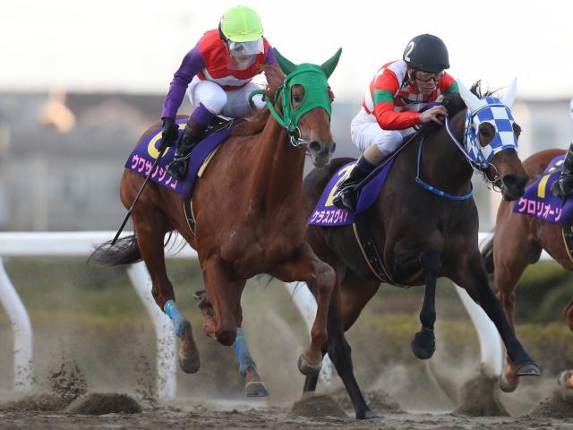和田譲治騎手騎乗の8番人気ウワサノシブコが優勝(撮影:高橋正和)