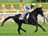 【中山記念出走馬・騎手確定】クラージュゲリエ&C.ルメール騎手など15頭、ビターエンダーは骨折回避