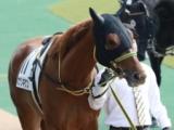 【POG】カナリキケン「自分の競馬ができれば」/馬三郎のつぶやき