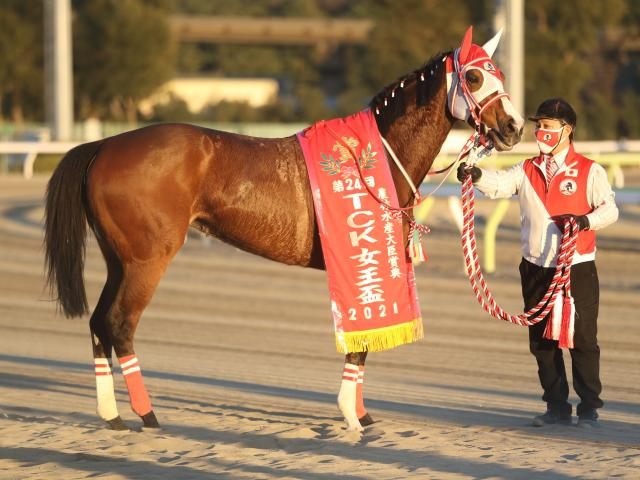 【川崎・エンプレス杯出走予定馬】マルシュロレーヌ、プリンシアコメータら