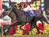 【ドバイシーマクラシック出走予定馬】日本のクロノジェネシス・ラヴズオンリーユー、英のミシュリフ、愛のモーグルなど
