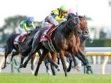【ドバイターフ出走予定馬】日本のヴァンドギャルド、英のロードグリッターズ・ロードノースなど
