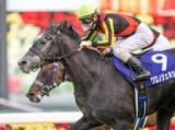 2021香港チャンピオンズデーに日本馬25頭が登録