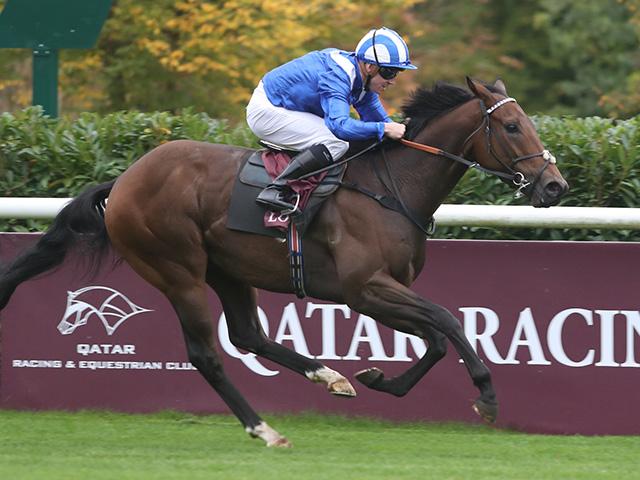 昨年の欧州最優秀短距離馬で、ハムダン殿下の所有馬バターシュ(写真は2017年アベイドロンシャン賞出走時、撮影:高橋正和)