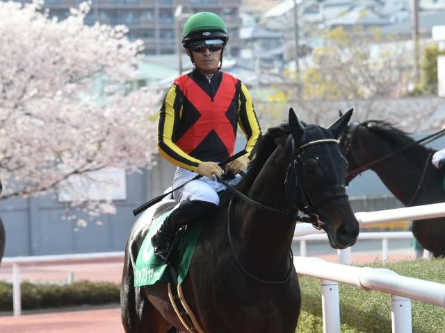 川田将雅騎手騎乗のシャフリヤールが勝利(c)netkeiba.com