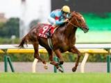 【香港チャンピオンズM】サリオスが招待辞退 今後は状態次第で安田記念へ