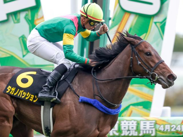 勝利したタガノパッションと岩田望来騎手(c)netkeiba.com、撮影:下野雄規
