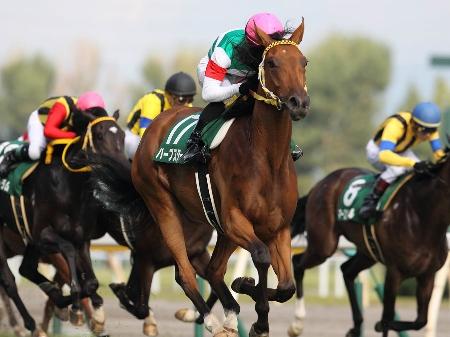 ハープスターが最後方追走から、直線で全馬をまとめて交わし圧勝(撮影:下野雄規)