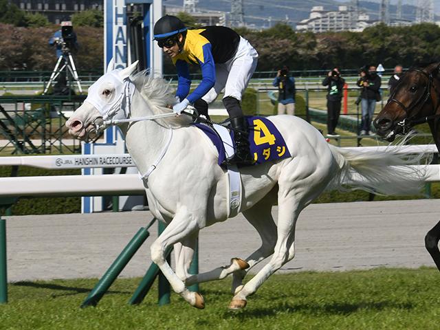 オークスで無敗の牝馬クラシック2冠制覇に挑むソダシ