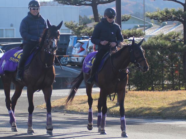 ヨーホーレイク(写真右)には東京2400mが一番合っていると友道師も話す(撮影日:2020年12月17日、撮影:花岡貴子)