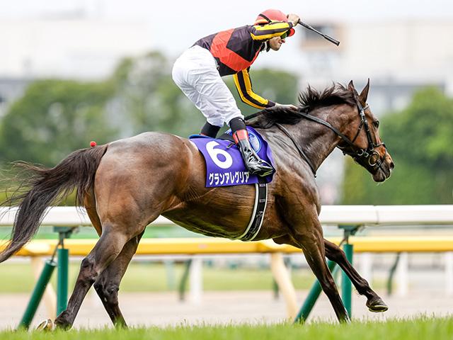 ヴィクトリアMを4馬身差で圧勝したグランアレグリア(撮影:下野雄規)