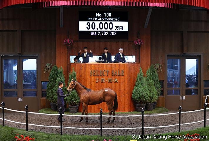 藤田氏が3億円で落札したファイネストシティの2020(提供:日本競走馬協会)