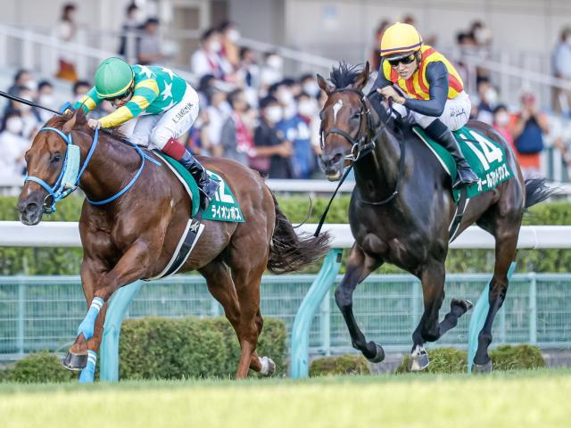 先週のアイビスSDは初重賞制覇のオールアットワンスを始め、上位を関東馬が独占した(c)netkeiba.com、撮影:下野雄規