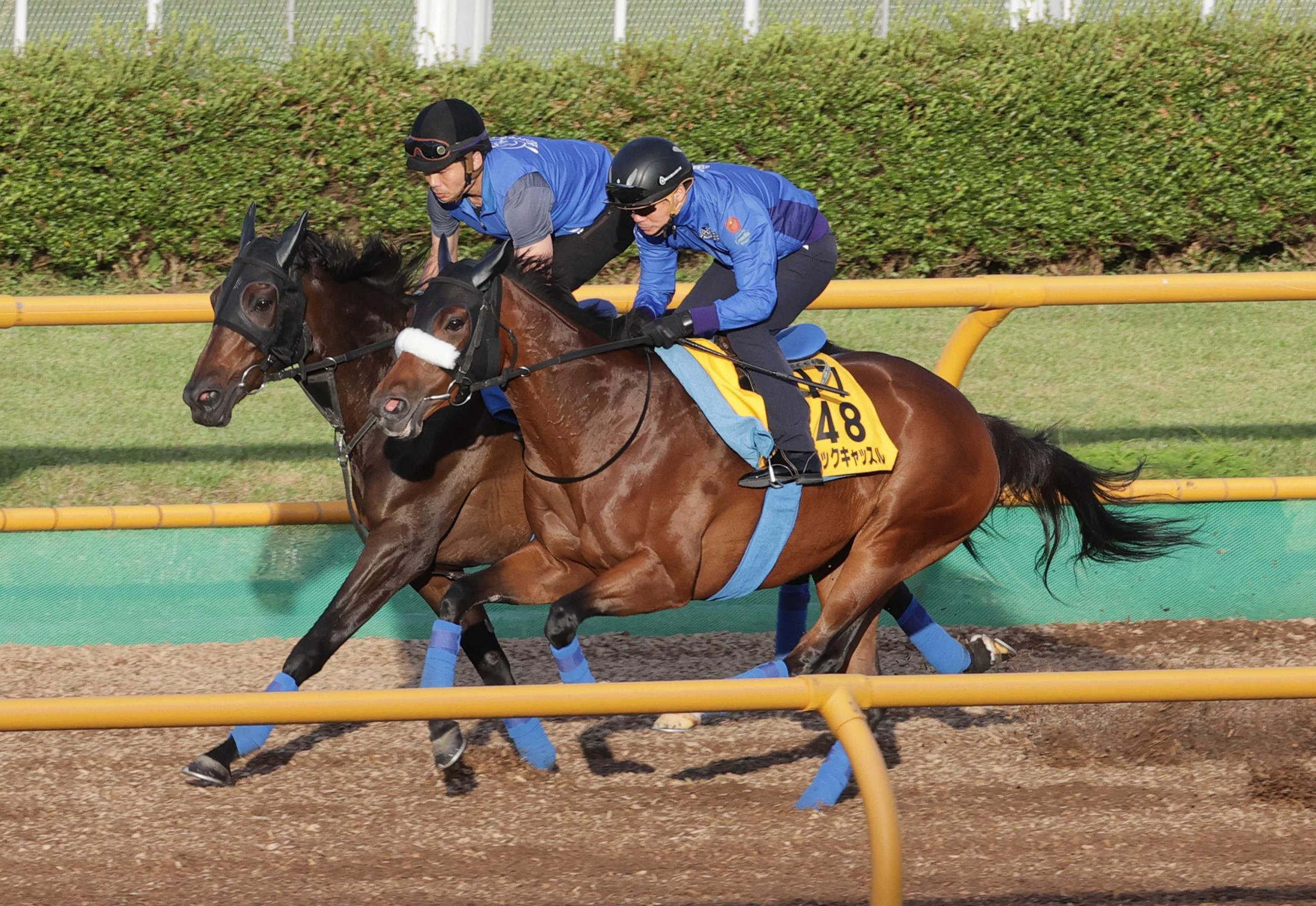 併せ馬で負荷をかけられたマジックキャッスル(手前)とドナアトラエンテ