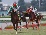 タイキポーラとノボキッスが引退馬協会の受け入れ馬に ナイスネイチャ・33歳のバースデードネーションで