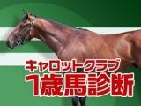 【キャロットクラブ2021 馬体診断】「新種牡馬産駒」「3000万円以下」「クラシック向き」の珠玉8頭とは?