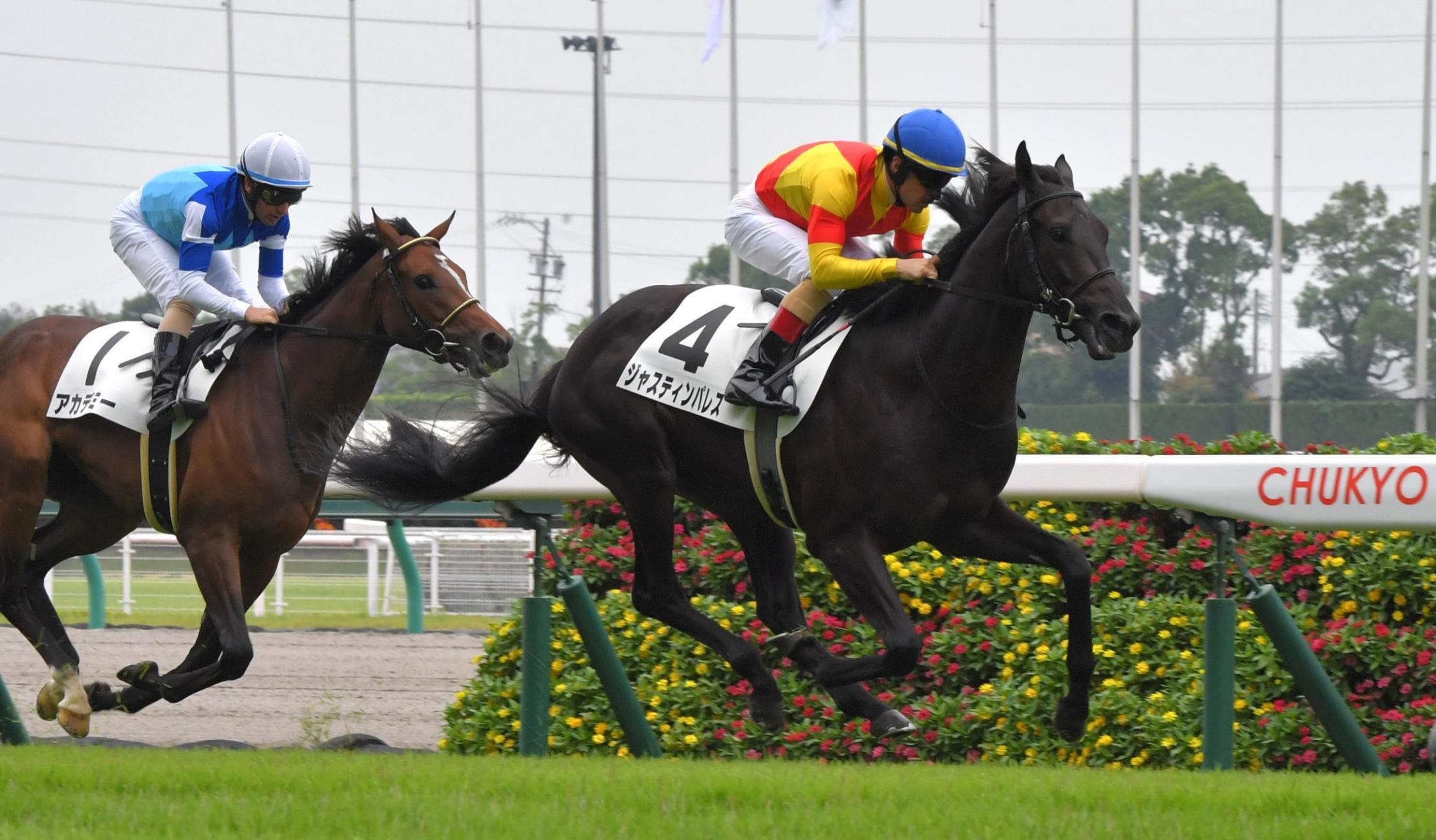 中京5Rの新馬戦を制したジャスティンパレス(右)