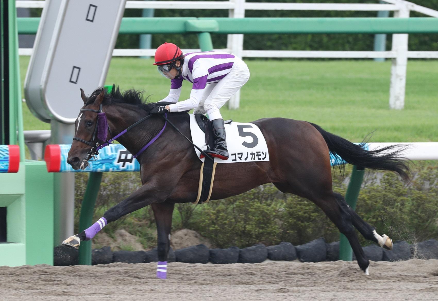 後続に4馬身差をつけて圧勝したコマノカモン