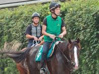【POG】ソクラテス 厩舎ゆかりの良血いざ初陣 スケール大きい推定500キロ好馬体