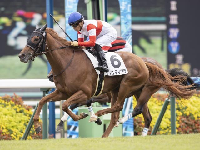 【中山5R新馬戦結果】ダノンティアラが押し切ってデビュー勝ち   川田将雅オフィシャルサイト