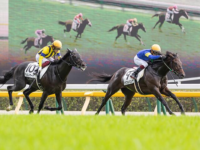チェルノボーグ(左)の猛追を凌いだテラフォーミング(右)(c)netkeiba.com、撮影:橋本健