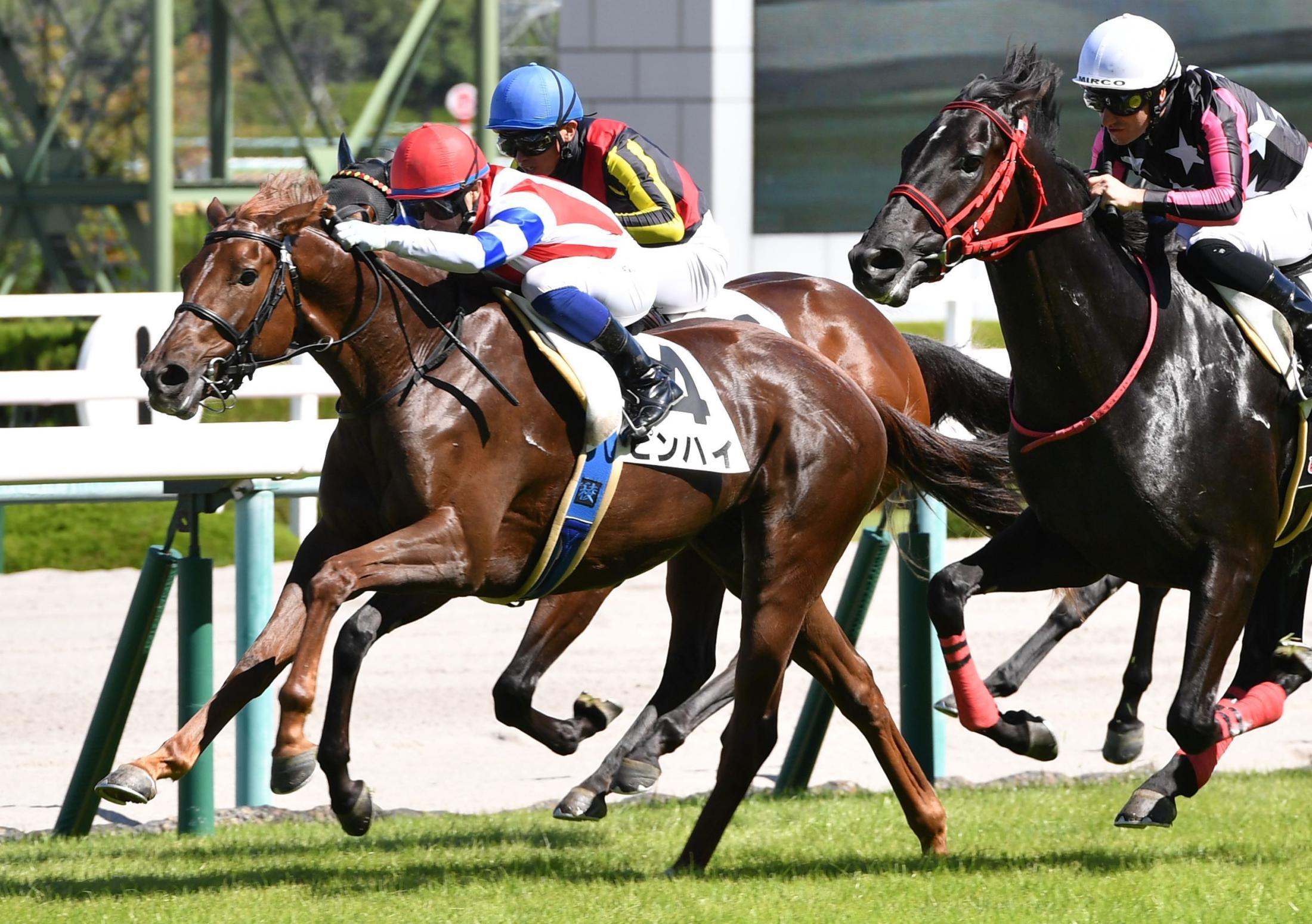 阪神4R新馬戦、ゴール前で鋭い脚を見せたピンハイ(撮影・佐々木彰尚)