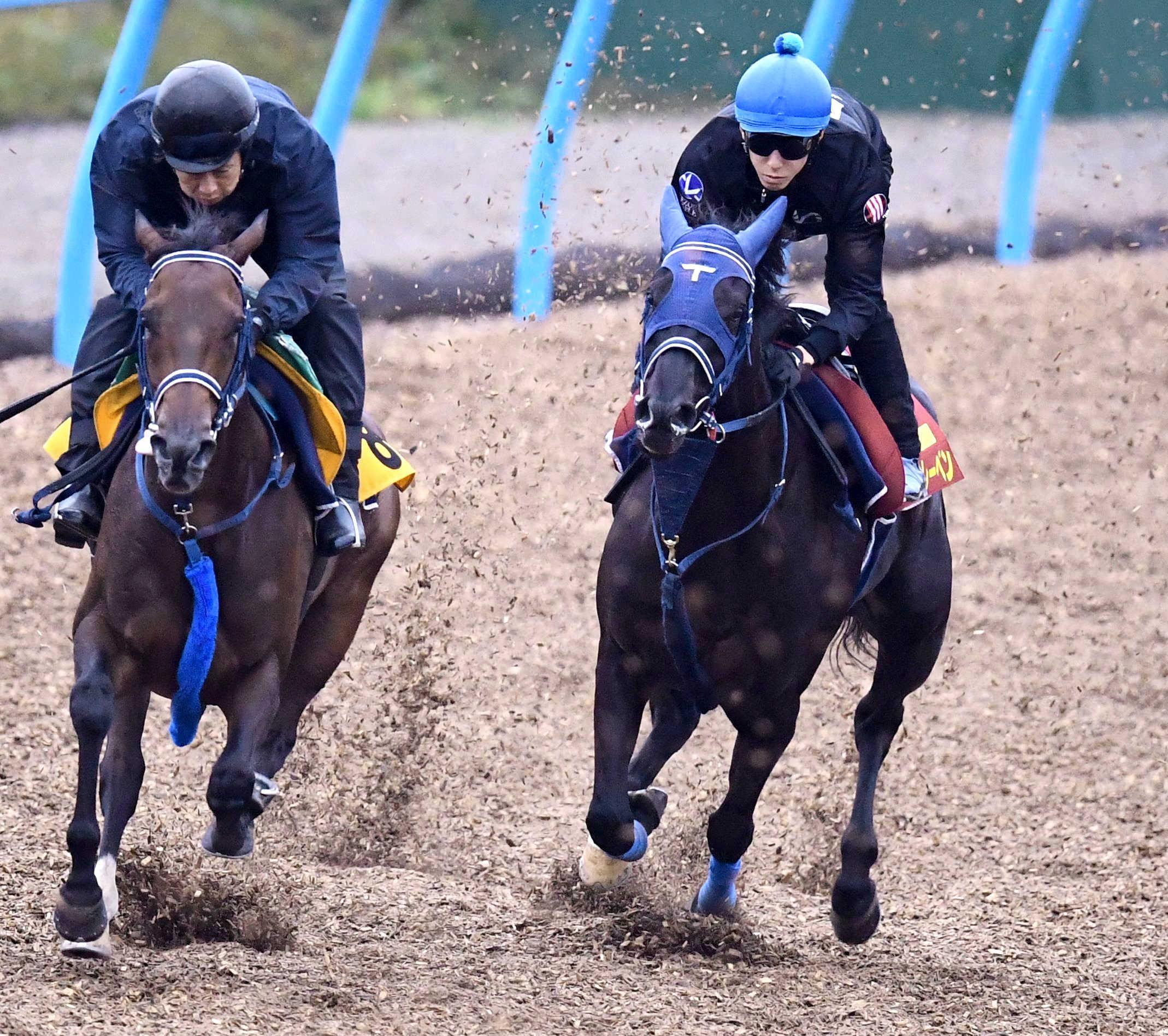 ユーバーレーベン(右)は美浦Wで力強い走りを見せた(撮影・園田高夫)