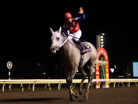 重賞9勝の活躍を見せたフジノウェーブが死去(写真は2007年JBC優勝時、撮影:高橋正和)