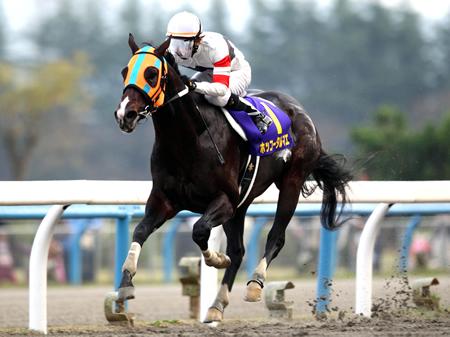 積極的にハナを切った幸英明騎手騎乗のホッコータルマエがそのまま逃げ切ってGI・3勝目を挙げた(撮影:高橋正和)