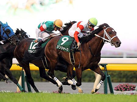 7枠13番からのスタートとなったダノンシャーク(写真は2013年富士S優勝時、撮影:下野雄規)