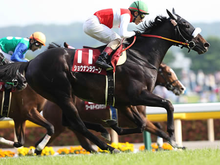 吉田豊騎手騎乗のショウナンラグーンがワールドインパクトをゴール寸前で捕らえ優勝した(撮影:下野 雄規)