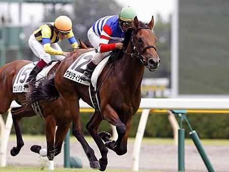 重賞でも堅実さを見せるクラリティシチー(写真は2013年新馬戦優勝時、撮影:下野雄規)