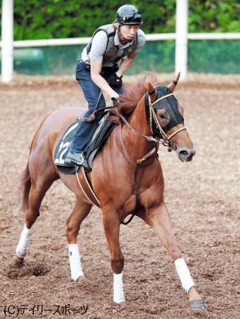 得意のスプリント戦で古馬に挑戦するベルカント