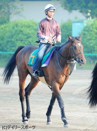 スケールの大きな良血馬アヴニールマルシェ
