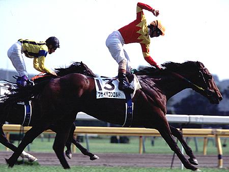 1996年の日本ダービーを制したフサイチコンコルド(撮影:下野雄規)