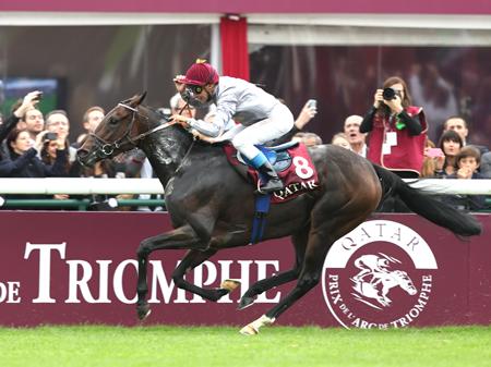 T.ジャルネ騎手騎乗のトレヴ(牝4、仏・C.ヘッドマーレック厩舎)が36年ぶりの凱旋門賞連覇を達成。日本馬はハープスターの6着が最高だった(撮影:高橋 正和)