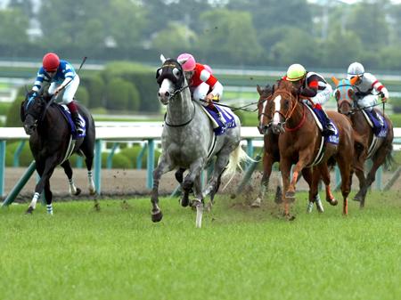 有馬記念ファン投票1位となったゴールドシップ(写真は2014年宝塚記念優勝時)