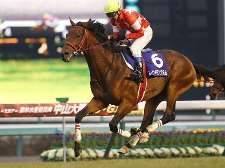 北沢伸也騎手騎乗のレッドキングダムがアポロマーベリックを突き放し、人馬ともにJ・GI初制覇(撮影:下野雄規)