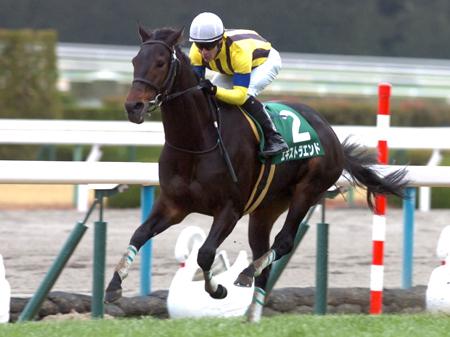 前回のこのレースの覇者エキストラエンド(写真は2014年京都金杯優勝時)