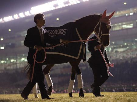2014年度JRA賞の年度代表馬に輝いたジェンティルドンナ(写真は引退式、撮影:下野雄規)