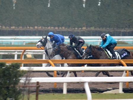 岩田騎手が跨ってAJCCの1週前追い切りを行ったゴールドシップ(撮影:井内利彰)