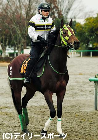 牡馬相手の重賞に挑む東の大物牝馬ルージュバック