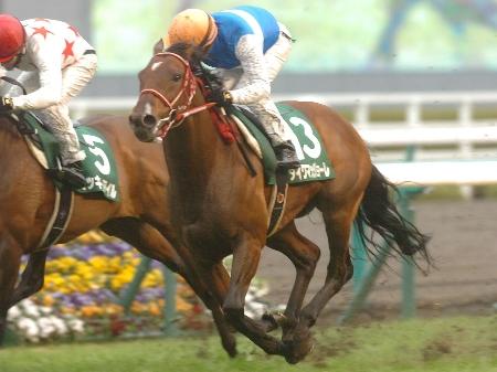 ダイワマッジョーレがゴール直前でミッキーアイルを差し切り阪急杯を制覇