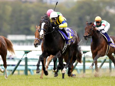 大阪杯を回避するイスラボニータ(写真は2014年皐月賞優勝時、撮影:下野雄規)