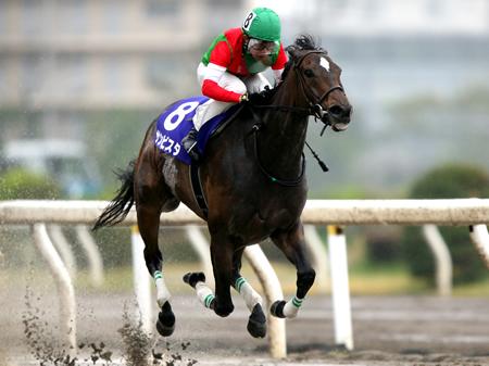 1.6倍の断然人気に推された岩田康誠騎手騎乗のサンビスタが2着トロワボヌールに4馬身差をつけ優勝した(撮影:武田 明彦)