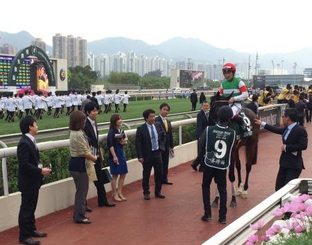 香港QEIIで惜しくも2着となったステファノス(撮影:花岡貴子)