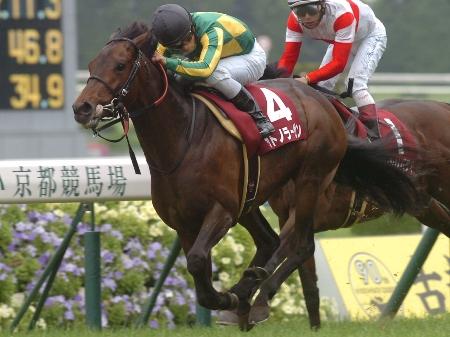 京都新聞杯はサトノラーゼンが押し切り重賞初制覇