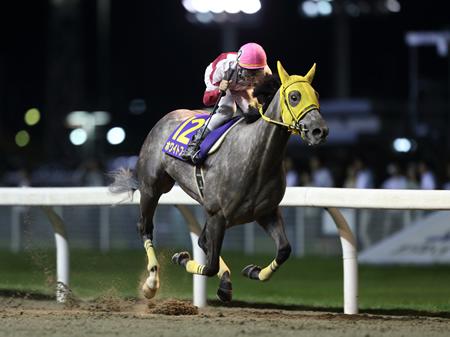 大野拓弥騎手騎乗のホワイトフーガが、2着のポムフィリアに2.3秒もの大差をつけ優勝した。圧倒的人気のアルビアーノは4着に敗れた(撮影:高橋 正和)