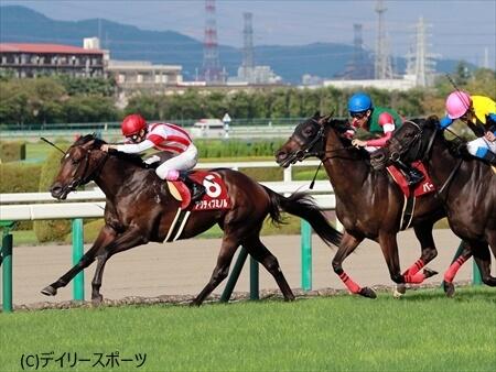 逃げ切り勝ちで2つ目の重賞タイトルを獲得したアクティブミノル=阪神競馬場