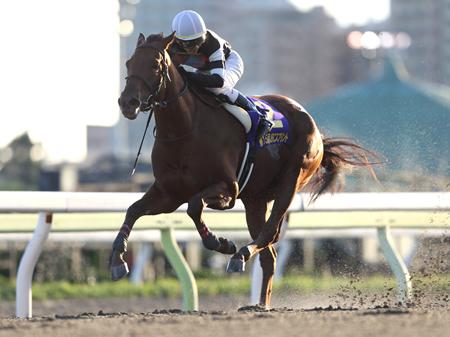 ダッシュ良く先手を取った松山弘平騎手騎乗のコーリンベリーが、そのままゴールまで逃げ切って優勝(撮影:高橋 正和)